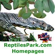 ReptilesPark Info Pages!